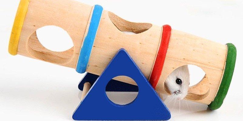 ТОП-5 классных игрушек для хомяков из Aliexpress
