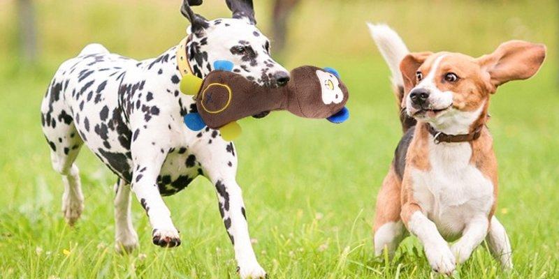 ТОП-5 игрушек для собак дешевле 400 руб  с ALIEXPRESS