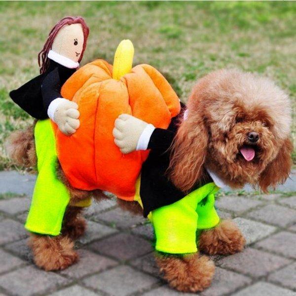 Смешной наряд на праздники IDEPET для маленьких собачек (5 размеров)