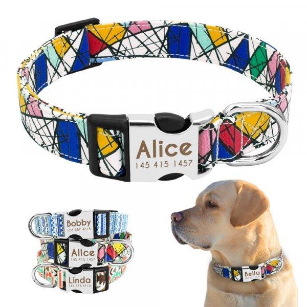 Яркий ошейник для собаки Didog с гравировкой (3 цвета, 3 размера)