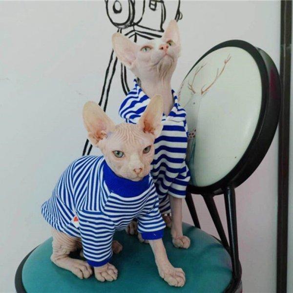 Забавная тельняшка для кошек (5 размеров, 2 цвета)